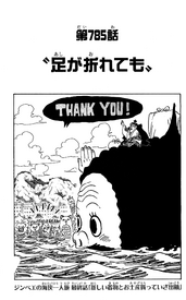 Chapter 785