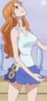 Nami's Outfit After Leaving Zou