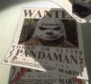 Pandaman Avis de Recherche