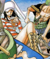 Robin vestimenta portada 483