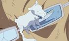 Galdino crée une vache en cire