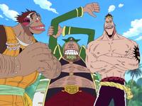 Saruyama Alliance Pre Timeskip Anime Infobox