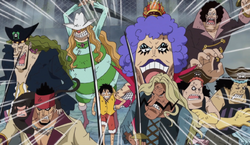 Subordinate Captains Defend Luffy
