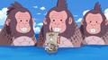 Trois singes de mers