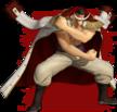 Whitebeard Pirate Warriors 4