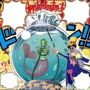 Keimi in the aquarium