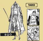 Taro sbs