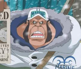 Anime Gorilla Infobox