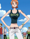 Nami Davy Back Fight Arc Outfit