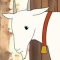 Brief's Goat Portrait