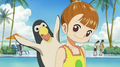 Nukky pingouin