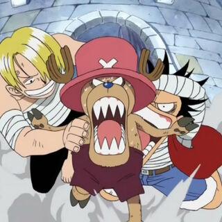 Sanji und Luffy klammern sich an Chopper.