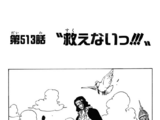 Chapter 513