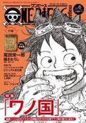 One Piece Magazine Vol. 6 Couverture VO