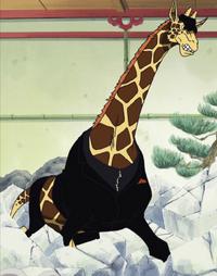 Kaku giraffa