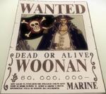 Woonan Bounty