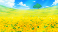 Le Champ de Fleurs Anime Infobox