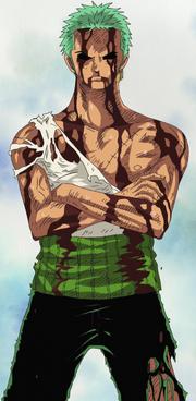 Speculations | One Piece Wiki | FANDOM powered by Wikia