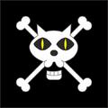 Piratas Gato Negro bandera