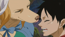 Wanda lame a Luffy
