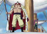 Whitebeard Compared to Normal Humans