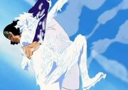 250px-Ao Kiji vs Luffy.