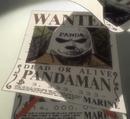 Pandaman wanted