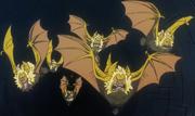 Pipistrelli dorati