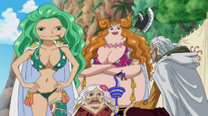 Rayleigh Meets With Sandersonia, Marigold and Gloriosa