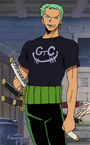 Zoro Post Enies Lobby Arc Outfit
