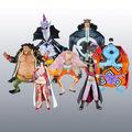 One Piece Gathering Shichibukai