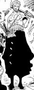 Zoro Punk Hazard Arc First Outfit