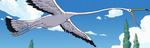 Long Ring Long Land Stork