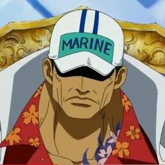 Akainu'nun animedeki görünümü.