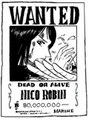 Wanted Robin 80 000 000