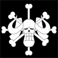 百獸海賊團 Portrait