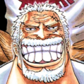 Monkey D. Garp Portrait-0