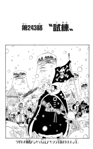 Chapter 243