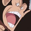 Mono de los Piratas del Pelirrojo portrait