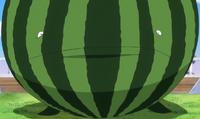 Fruit Footballfish Watermelon