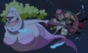 Kokoro secourt les Mugiwara