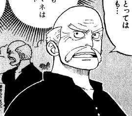 Poro Manga Pre Timeskip Infobox