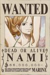 Nami's Current Wanted Poster
