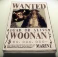 Recompensa de Woonan