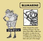 Blumarine sbs