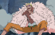 Donquixote Doflamingo Anime Debut Infobox