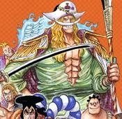 Whitebeard Manga Color Scheme at Age 48
