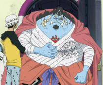 Jinbe After Surgery