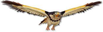 Fruta Tori Tori: Modelo Águila