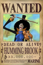 Brook-wanted